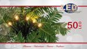 Kerstverlichting 50 LED warm wit