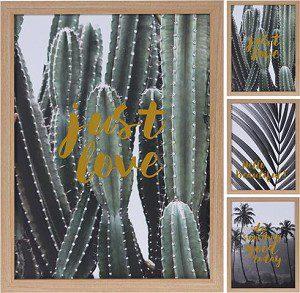 wanddeco cactus