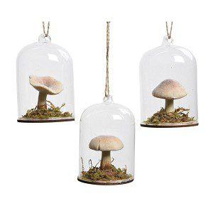 paddenstoel in stolp