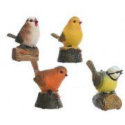 vogel met bewegingsmelder
